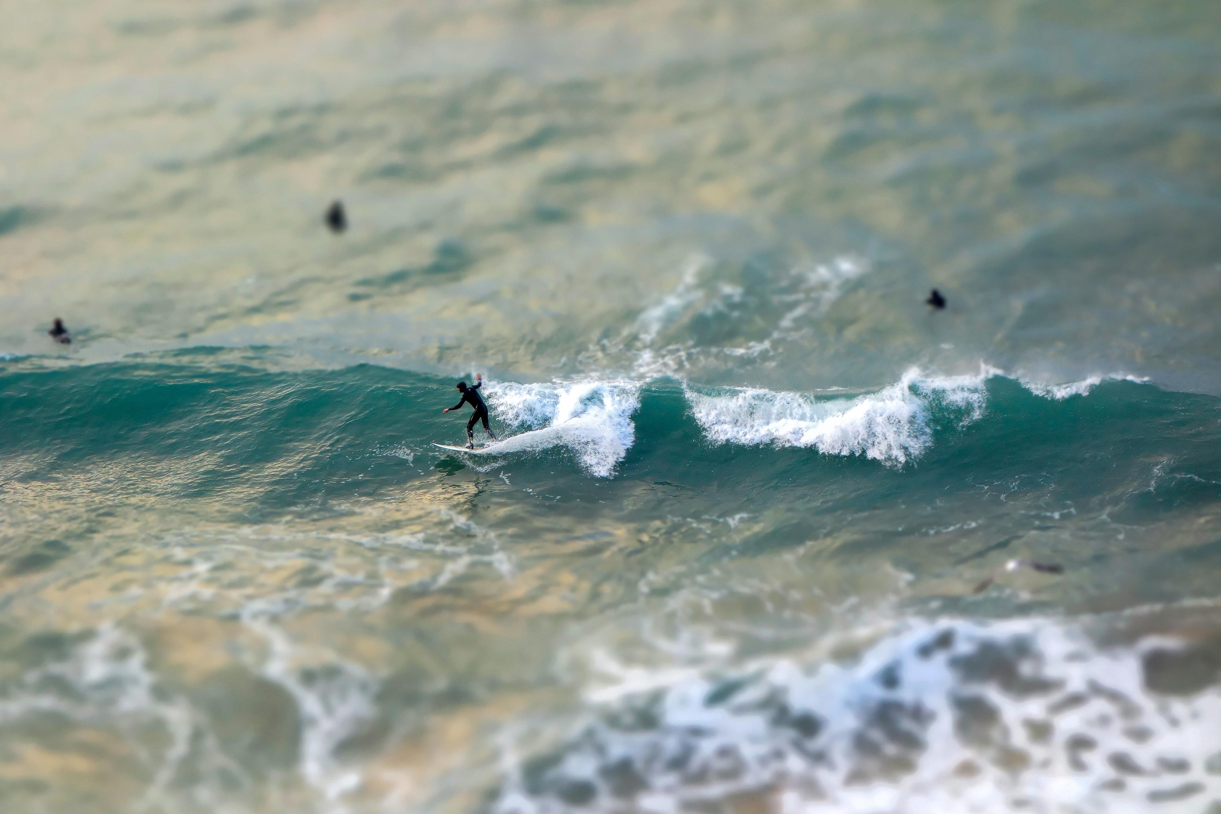 długa fala i surfer