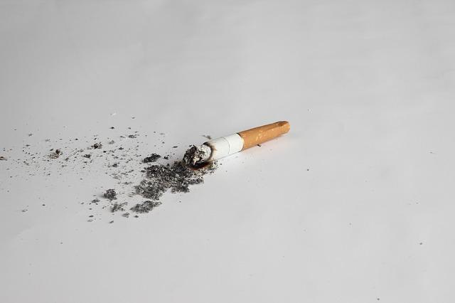 wypalony papieros
