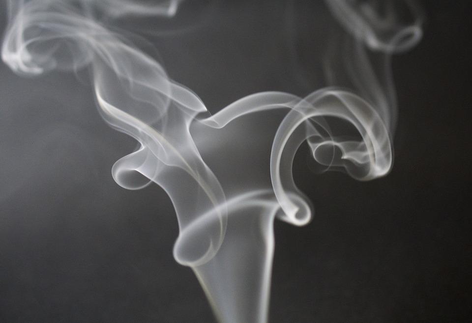 profilaktyka palenia