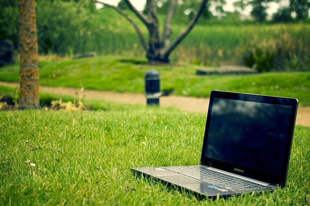 laptop na trawie