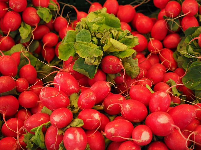Nowalijki - blog o Corporate Wellness